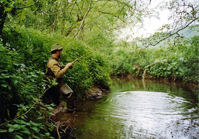Upper Cod Beck, Above Sowerby Waters.Reproduced with the kind consent of Neil Perry.