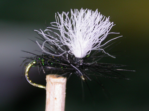Small Black Dry Fly #18Tied by Michael Weeks