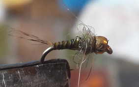 Tungsten Bead Nymph2